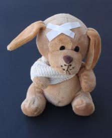 teddy-242831